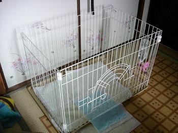 犬小屋 DIY 22.jpg