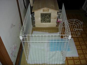 犬小屋 DIY 25.jpg